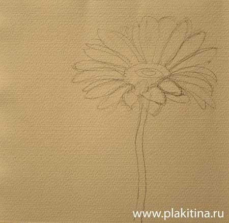 Комнатный цветы фото и названия цветы